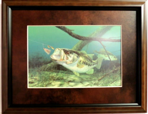 """BASS FISH PICTURE """"UNHAPPY CAMPER"""" TURTLE RANDY MC GOVERN MATTED FRAMED 16X12"""