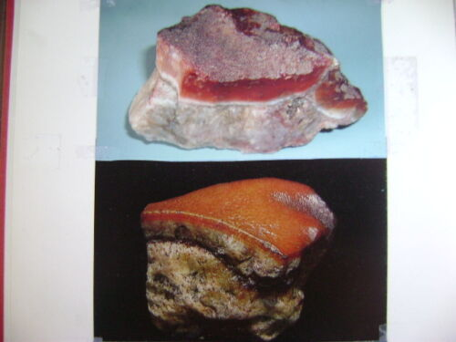 """COLLECTION A - A  NATURALLY FORMED  """"BBQ PORK"""" ROCK !!"""