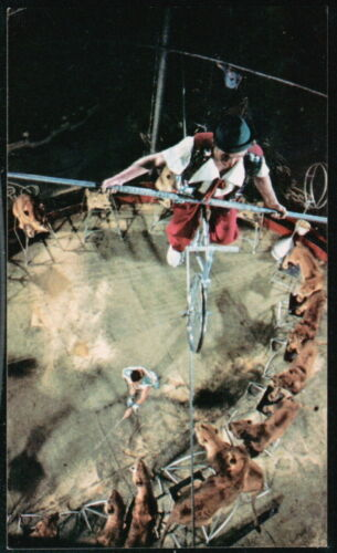 RINGLING BARNUM BAILEY CIRCUS Highwire Bicycles Vintage 1973 Postcard Old PC