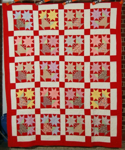 """GORGEOUS Vintage 30's """"Potted Star Flower"""" Carolina Lily Antique Quilt ~NICE RED"""