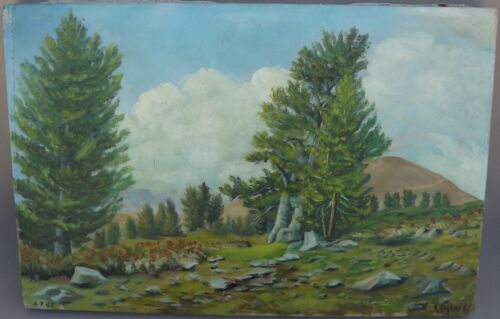 Vintage French Oil Painting on Canvas Mountain Landscape Signed R Gontard
