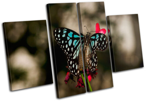 Butterfly Flowers Animals MULTI CANVAS WALL ART Picture Print VA