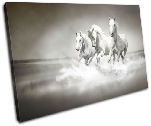 Herd Horses Animals SINGLE CANVAS WALL ART Picture Print VA