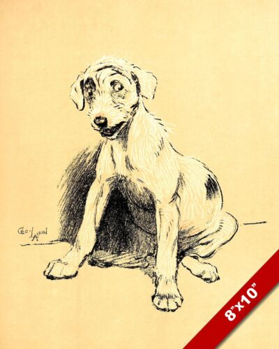 GUILTY LOOK PET PUPPY DOG ANIMAL ART CECIL ALDIN PAINTING PRINT ON REAL CANVAS