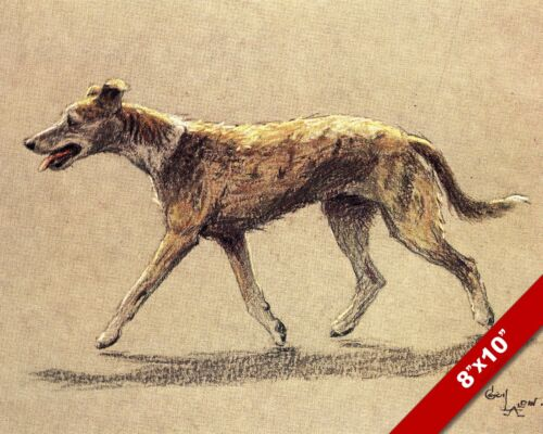 LURCHER PET PUPPY DOG ANIMAL ART CECIL ALDIN PAINTING PRINT ON REAL CANVAS