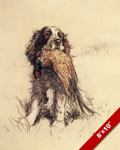 SPANIEL & PHEASANT PUPPY DOG ANIMAL ART CECIL ALDIN PAINTING PRINT REAL CANVAS