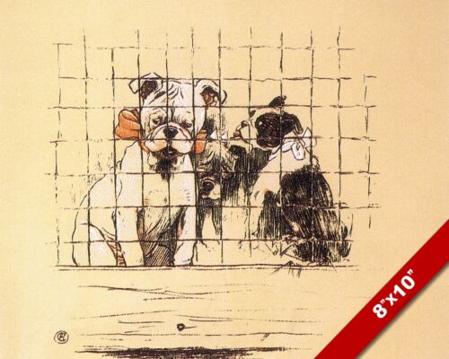 BEHIND BARS PET PUPPY DOG ANIMAL ART CECIL ALDIN PAINTING PRINT ON REAL CANVAS