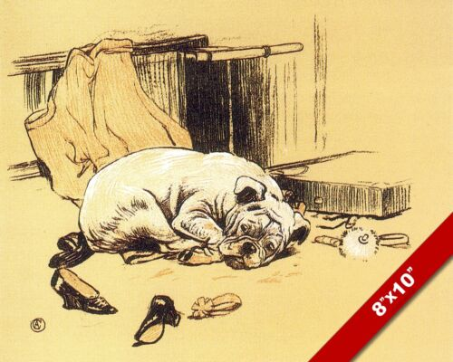TIRED BULLDOG PET PUPPY DOG ANIMAL ART CECIL ALDIN PAINTING PRINT ON REAL CANVAS