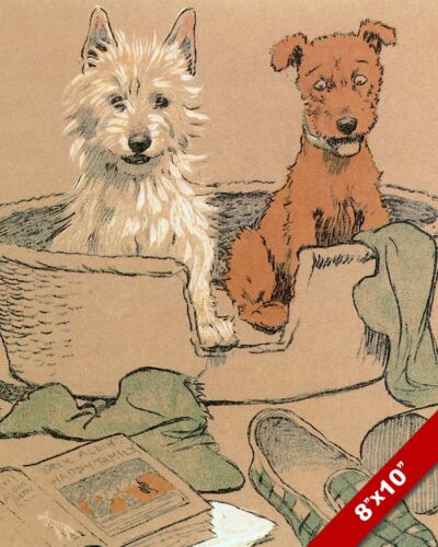 FRIENDS IN A BASKET PET PUPPY DOG ART CECIL ALDIN PAINTING PRINT ON REAL CANVAS