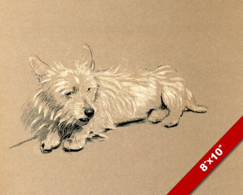 QUIET MOMENT PET PUPPY DOG ANIMAL ART CECIL ALDIN PAINTING PRINT ON REAL CANVAS
