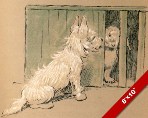 BUNNY RABBIT PET PUPPY DOG ANIMAL ART CECIL ALDIN PAINTING PRINT ON REAL CANVAS