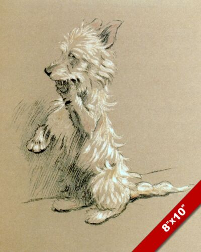 TERRIER STANDING PET PUPPY DOG ART CECIL ALDIN PAINTING PRINT ON REAL CANVAS