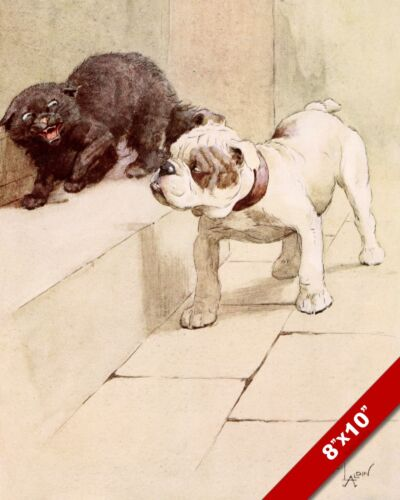 BULLDOG & CAT PET PUPPY DOG ART CECIL ALDIN PAINTING PRINT ON REAL CANVAS
