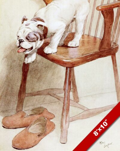 BULLDOG & SLIPPERS PET PUPPY DOG ART CECIL ALDIN PAINTING PRINT ON REAL CANVAS