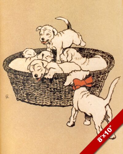PUPPIES IN A BASKET PET PUPPY DOG ART CECIL ALDIN PAINTING PRINT ON REAL CANVAS