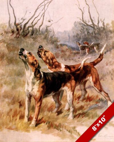 HOWLING FOXHOUNDS PET HUNTING DOGS DOG ART PAINTING PRINT ON REAL CANVAS