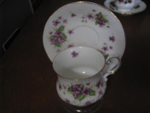 Queen's Bone China Tea Cup and Saucer With Violets  England