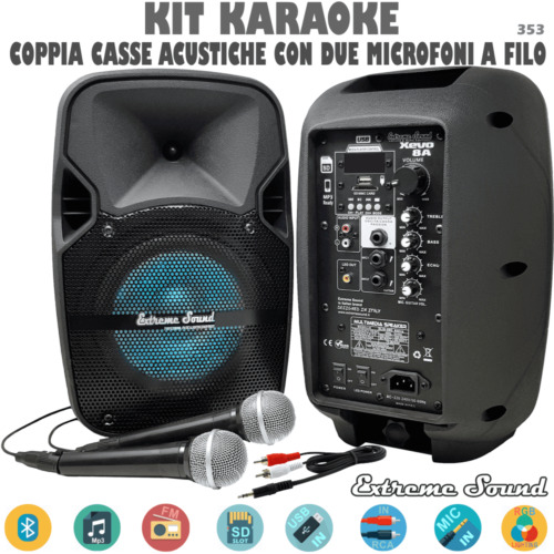 2 CASSE AUDIO AMPLIFICATE 1300 Watt EXTREME SOUND Bluetooth USB RADIO FM KARAOKE