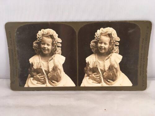 """Real Photo Stereoview """"PERFEC"""" #5215 """"Captured At Last"""" c.1902 BY H.C. WHITE CO."""