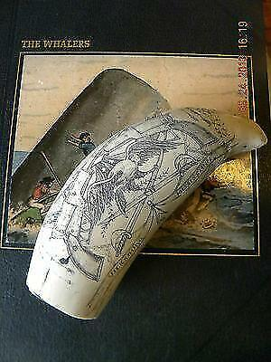 "Scrimshaw Sperm whale tooth resin replica ""VICKSBURG"" 8 inch long GREAT DETAILS"