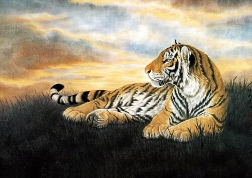 Dream-art oil painting wild animal yellow tiger on grass in landscape canvas 36""