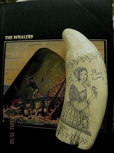 """Scrimshaw Sperm whale tooth resin REPRODUCTIO the ship  """"ROMULUS"""" 7 INCHES LONG"""