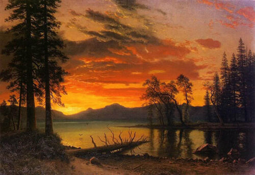 """Oil painting nice landscape trees Evergreen by river in sunset canvas 24""""x36"""""""