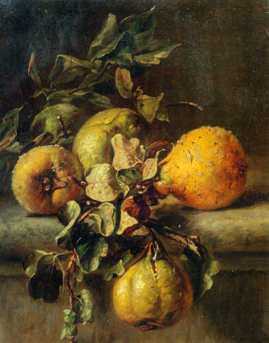 No framed Oil painting beautiful still life fruits Quinces on a Ledge canvas