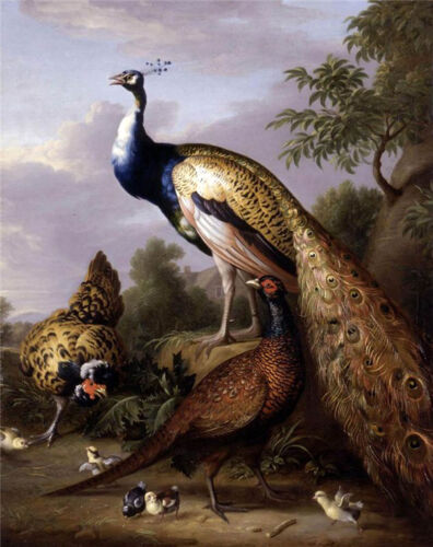 Beautiful Oil painting Tobias Stranover - Peacock, Hen and a Landscape on canvas