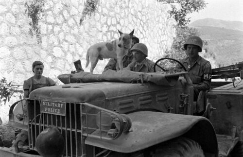 WW2 Photo WWII  US Army 3rd Infantry Military Police with Dog Italy 1944  / 1408United States - 156437