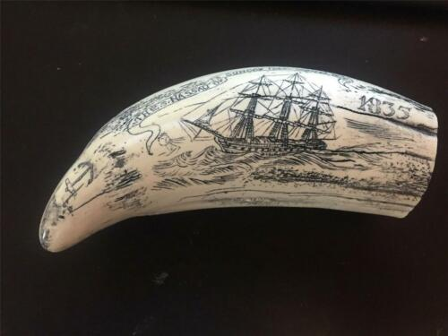 """Scrimshaw Sperm whale tooth resin REPRODUCTION """"NASSAU 1835"""" 8"""" AROUND THE CURVE"""