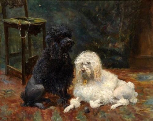 Oil painting beautiful charming two dogs Poodle Sitting on the carpet on canvas