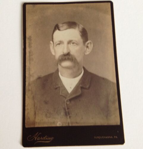 Antique Photo Susquehanna PA Cabinet Card Harding Man with Mustache Vintage