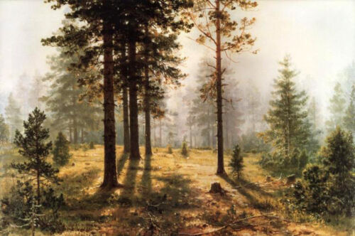 Oil painting Shishkin Ivan Ivanovich - Fog in the woods forest Hand painted art