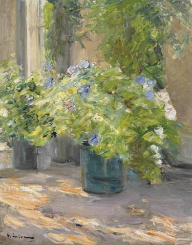 Max Liebermann Flower Pots In Front Of The House Canvas Print 16 x 20   #4309