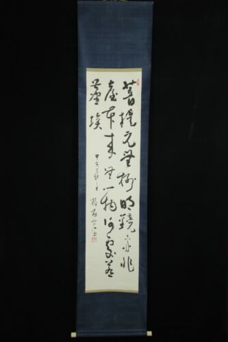 DEC069 CHINESE  HANGING SCROLL CALLIGRAPHY HAND PAINTED SIGNED
