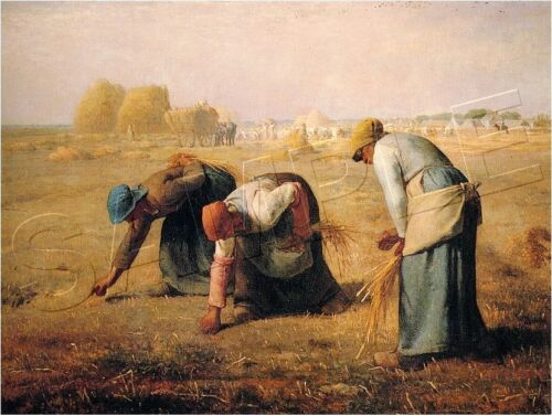 THE GLEANERS MILLET FARMERS IN FIELD *CANVAS* ART PRINT