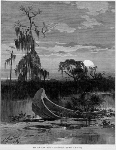 CANOE SUBMERGED IN CYPRESS SWAMP, 1889 ANTIQUE ENGRAVING, THE OLD CANOE, CYPRESS
