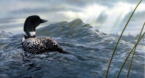 """Weather the Storm Loon Print by Scot Storm Signed 18"""" X 11"""""""