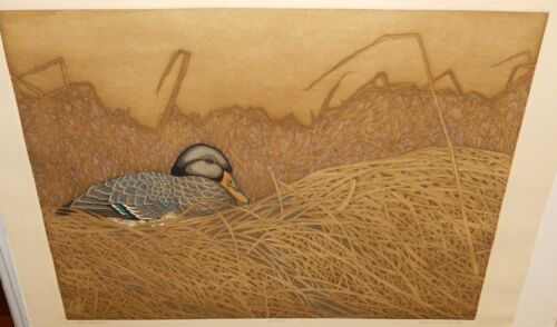 """YVONNE DAVIS """"WINDSWEPT"""" LIMITED EDITION HAND SIGNED ETCHING"""