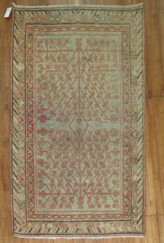 Antique Turkestan Khotan Rug Size 4'1''X6'10''
