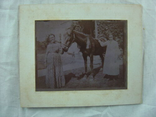Vintage 1900 Cabinet Photo Girls & Horse in Unusual Purple Color 793
