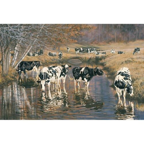 Bonnie Mohr Fall Reflections Cow and Farm Country Art Print- 18 x 12