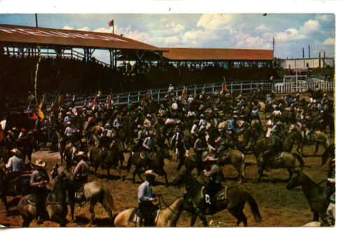 Cowboys at Typical Rodeo Gala Event-Western Vintage Postcard