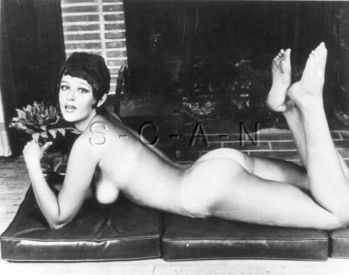 Carne 1960s-70s B / Con Real Photo- Endowed Woman- Marrón Lines- Butt- Pies Flor