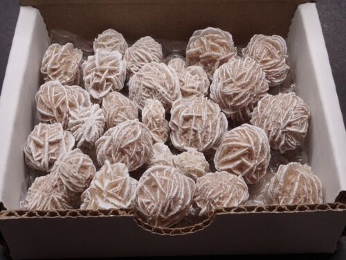 Desert Rose Collection Natural Selenite Crystal Clusters Brown White