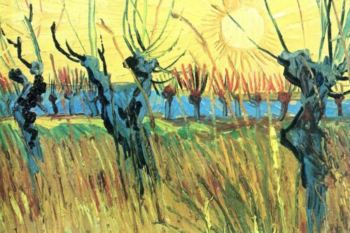 Grazing at sunset by Vincent Van Gogh Giclee Print Reproduction on Canvas