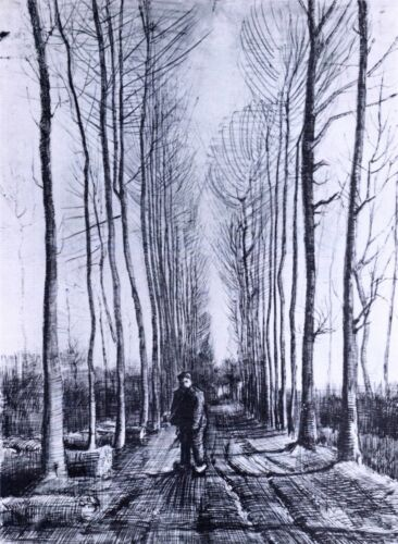 Poplar avenue by Vincent Van Gogh Giclee Fine Art Print Reproduction on Canvas