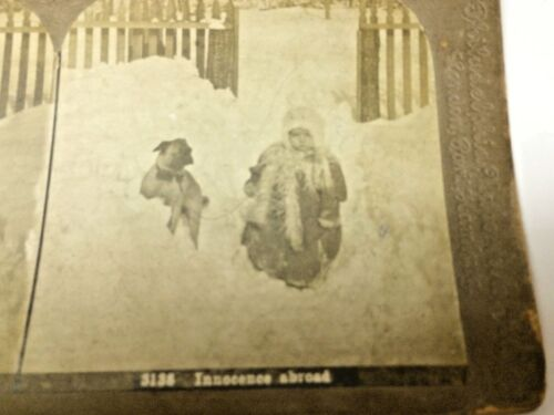STEREOCARD VIEWMASTER PUG DOG AND GIRL IN SNOW
