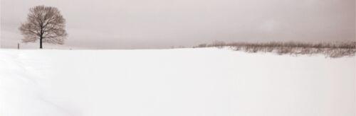 PHOTO ART PRINT - Winter Peace by Mark MacKinnon 24x58 Country Landscape Poster